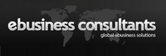 ebusiness consultants